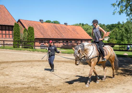 Nauka jazdy konnej w Stadninie Koni Galiny