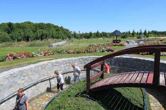 14. Ogród Ks. S. Kneippa.w Kamieniu Śląskim.jpeg
