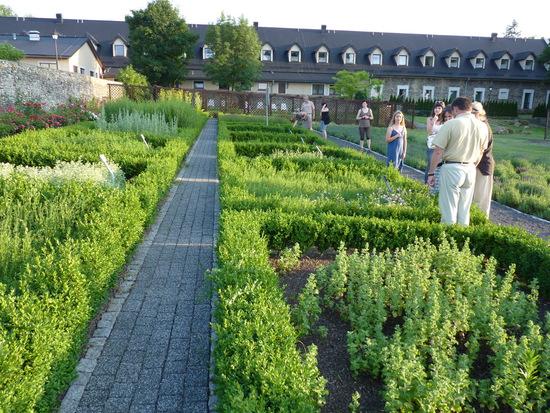 16. Ogród ziołowy w Kamieniu Śląskim..jpeg